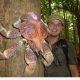 Omapärased loomad: Hiiglaslik Kookospähkli krabi (12 pilti)