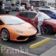 Kutt vaatab mitu kullakaevajat ta suudab Lamborghini ees seites üles korjata