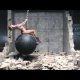 """Miley Cyruse """"Wrecking Ball"""" muusikavideo saab makeoveri – muusika asendatakse ehtsate heliefektidega"""