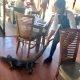 Vahepeal Austraalias.. Tööviisaga prantsuse neiu lohistab restoranist minema piraka iguaani