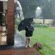Vahepeal Argentiinas – 12. aastane poiss mängib vihma käes, kui äkki lööb äike mõne meetri kaugusele maha