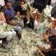 Taas uus päev ja uus dollar – stripparid kell 5 hommikul peale tööd raha lugemas