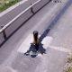 Kannatamatu autojuht sõidab karteri puruks