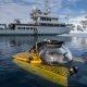 Sukeldumine Antarktikas 1000m sügavusele paljastab palju eksootilisi elukaid