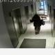 Mees jättis rihma otsas oleva koera liftist välja (video)
