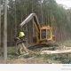 Metsa tegemine – Jaapan vs. Venemaa (2 videot)