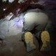Klaustrofoobiku õudusunenägu – segased vennad sisenevad üliväiksesse koopasse
